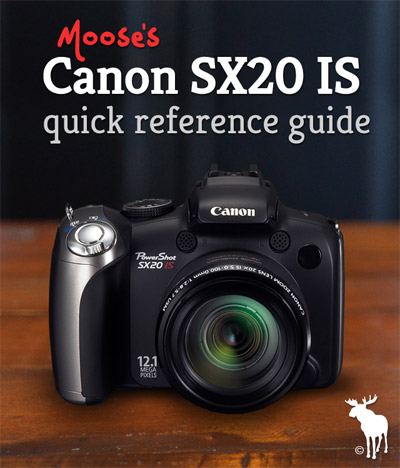Canon SX20 IS Quick Guide: Tips & Resources for Beginners