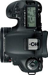 Canon 7D + 40mm f/2.8 STM