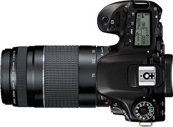 Canon 80D + 75-300mm f/4-5.6