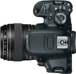 Canon T4i (650D) + 85mm f/1.8