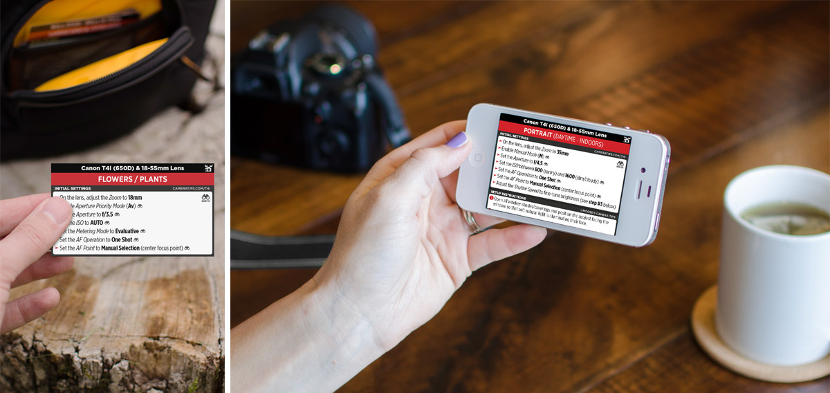 Canon T4i (650D) Cheat Sheet for Portraits and Nature Photography