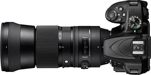 Nikon D3500 + 150-600mm f/5-6.3