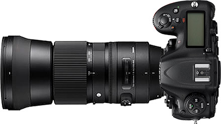 Nikon D500 + 150-600mm f/5-6.3