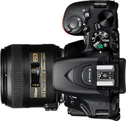 Nikon D5500 + 40mm f/2.8 STM