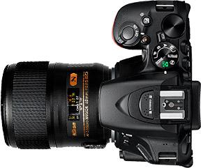 Nikon D5600 + 60mm f/2.8