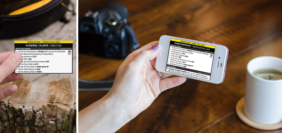 Nikon D7200 Cheat Sheet for Portraits and Nature Photography