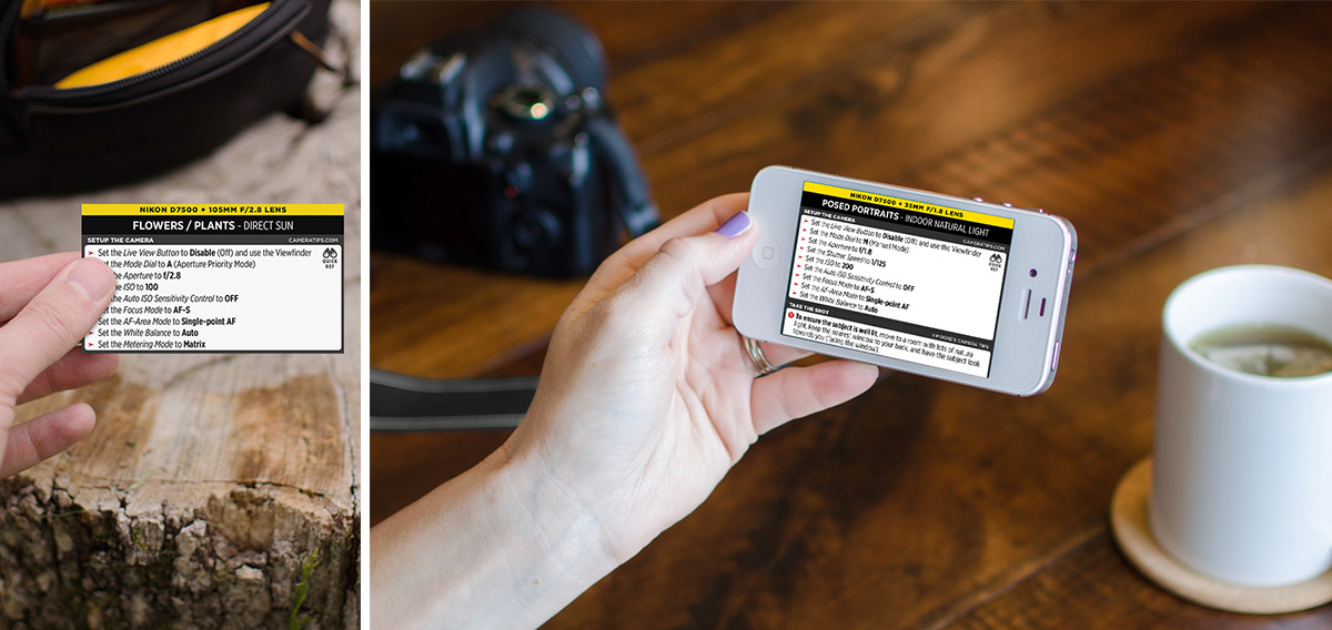 Nikon D7500 Cheat Sheet for Portraits and Nature Photography