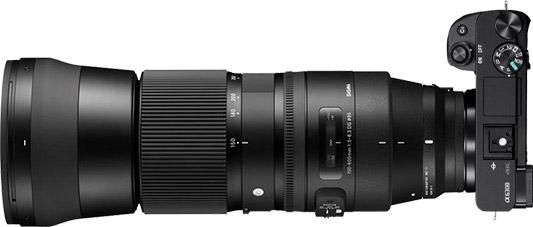 Sony a6300 + Sigma 150-600mm f/5-6.3