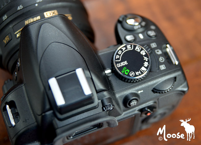 Nikon D3100 Settings & Shooting Modes for Beginners