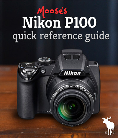 Nikon P100 Quick Guide: Tips & Resources for Beginners