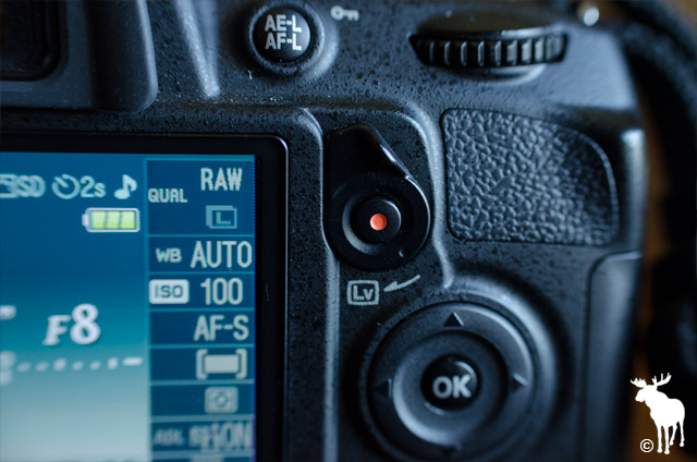 Nikon D3100 Live View Button