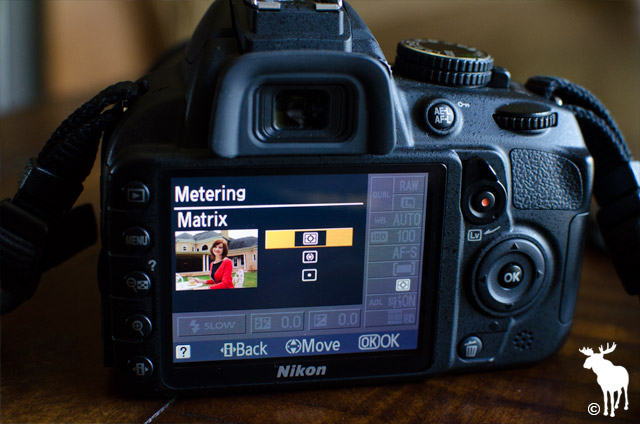 Nikon D3100 Matrix Metering
