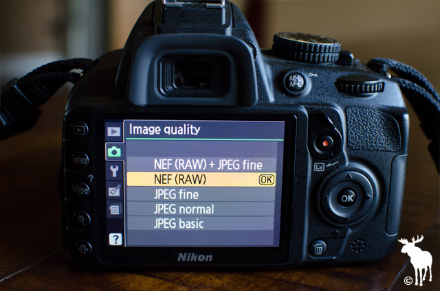 Nikon D3100 Image Quality set to NEF RAW