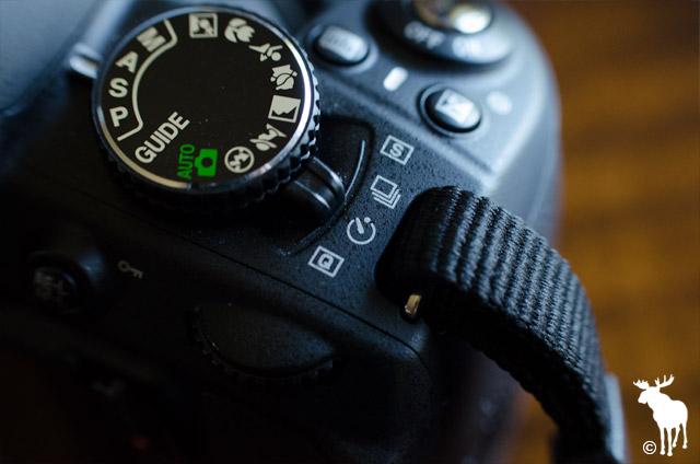 Nikon D3100 Self-timer