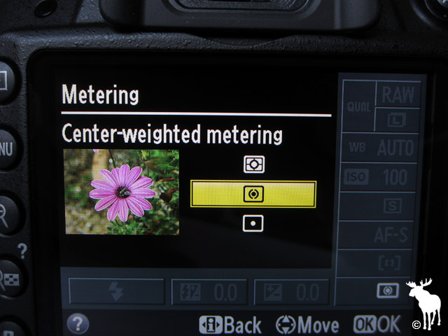 Nikon D3200 Center-weighted Metering