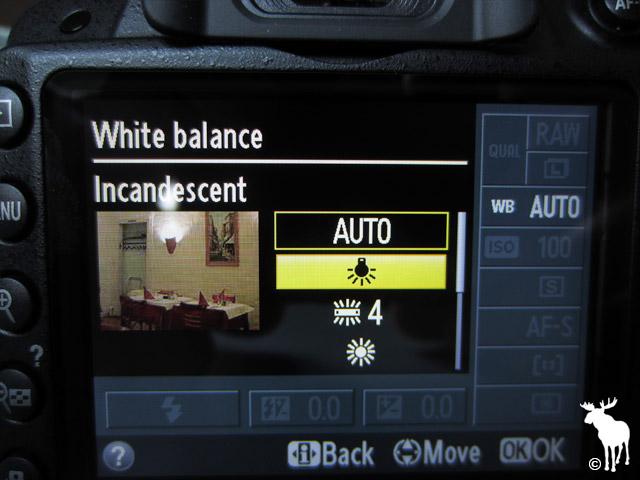 Nikon D3200 Incandescent White Balance