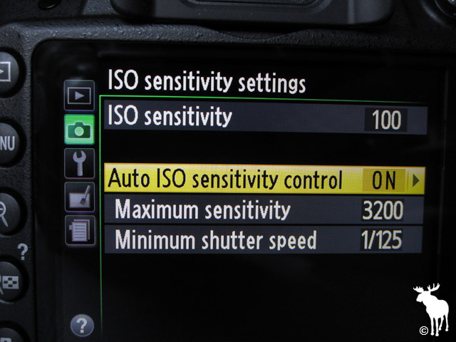 Nikon D3200 ISO Sensitivity Settings